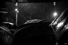 DSC_2219 (dariofal) Tags: outside marcha gente lluvia silencio del montevideo uruguay derechos humanos human rights derechoshumanos humanrights nunca 2019 mayo