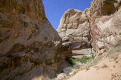 Spirit Arch (Jeff Mitton) Tags: spiritarch spiritcanyon sandstone landscape canyon arch utah coloradoplateau sanrafaelreef earthnaturelife wondersofnature