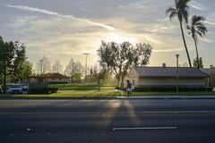 DSCF5274 (ernestoregaldo) Tags: street green grass sky man asphalt trees velvia fuji xpro1 canonfd 50mm road clouds park