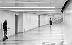 Stop & Go (TablinumCarlson) Tags: europa europe österreich austria wien vienna leic dlux6 dlux street ubahn gang sw bw blackwhite black white highkey streetphotography passing runner running waiting stop go öpnv sbahn bahn train staition bahnhof öbb viennaubahn untergrundbahn underground railway undergroundrailway
