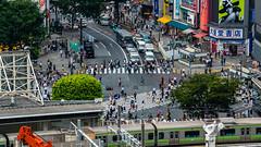 DSC_0253 (Adrian De Lisle) Tags: asia city cityscape crosswalk crowd japan people shibuya shibuyacrossing shibuyahikarie tokyo train trainstation shibuyaku tōkyōto