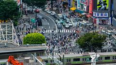DSC_0121 (Adrian De Lisle) Tags: asia city cityscape crosswalk crowd japan people shibuya shibuyacrossing shibuyahikarie tokyo train trainstation shibuyaku tōkyōto