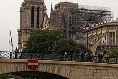 Notre Dame, Paris (sue_nurmi) Tags: paris notredame river bridge