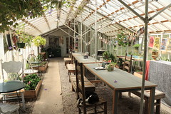 The Greenhouse on Porter (Zach Hawn) Tags: gulfcoast ussouth south southernus gulfofmexico wildlife animals nature naturenerd outdoors biodiversity gulfstates naturalist cafe coffeeshop coffee local travel