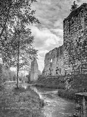 _75A0313-1bw400x297 (Len Miles) Tags: castle trim trimcastle meath ireland moat boyne riverboyne