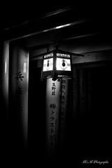 Lanterne (arrif-mehdi) Tags: lanterne meh photographie fushimi inari sanctuaire temple bouddhiste bouddha japon japan asia asie asian japonais kyoto kyotoites amazing beautiful lumieres