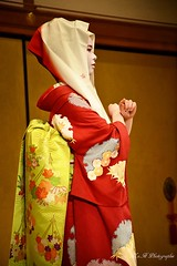 Maiko Mametama (arrif-mehdi) Tags: mametama meh photographie kimono costume dame maiko geisha nippon japon japonaise asia asie asiatic asiatique japan gion kyotoites tradition respect valeu danse danseuse art lifestyle theatre show spectacle amazing color flowers histoire mouvement motion humain human young girl
