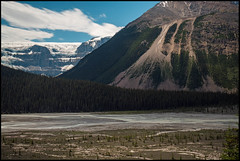 Approaching the Icefield (greenschist) Tags: athabascariver river forest alberta mountains canada glacier trees jaspernationalpark