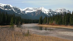 Bow River Banff Alberta Spring (Mr. Happy Face - Peace :)) Tags: bowriver art2019 trees forest national park cans2s hiking spring sky clouds mountains weather scenery landscape