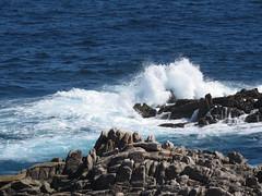 IMG_8750 (jesust793) Tags: mar sea olas waves costa coast rocas
