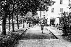 Walking (Thanathip Moolvong) Tags: olympus 35 sp ilford hp5 plus film people candid street black white bw rangefinder