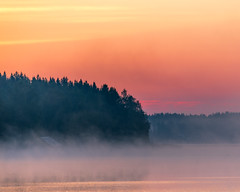 Early morning (JH') Tags: morning water wonderful trees tree outdoor outdoors ocean photoshoot photography sky sweden summer sunlight sunrise d850 forest field fog landscape colors warm clouds coast coastline beautiful nikon nature naturephotograph nikkor nikond850 explore