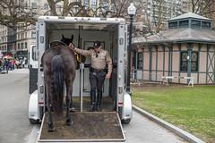 D1006610 (sswee38823) Tags: noctiluxm50mmf095asph noctiluxm109550mmasph noctilux095 noctilux noc noctiluxm109550asph leicanoctiluxm50mmf095asph 095 f95 leica50mmf95 50mm 50 m10 m10leica leicam10 leicacameraagleicam10 horse winston parkranger bostonparkranger mountedparkranger trailer people street city bostonma boston newengland leica leicam leicacamera rangefinder photography photograph photo nofilter seansweeney seansweeneyphotographer streetsofboston bostonstreetphotography streetphotography
