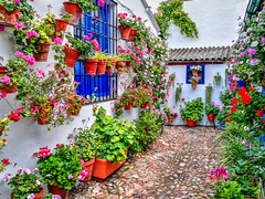 Patios de Córdoba (etoma/emiliogmiguez) Tags: córdoba patio macetas flores mayo patrimonio inmaterial