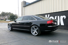 Audi A8 with 22in Savini BM11 Wheels (Butler Tires and Wheels) Tags: audia8with22insavinibm11wheels audia8with22insavinibm11rims audia8withsavinibm11wheels audia8withsavinibm11rims audia8with22inwheels audia8with22inrims audiwith22insavinibm11wheels audiwith22insavinibm11rims audiwithsavinibm11wheels audiwithsavinibm11rims audiwith22inwheels audiwith22inrims a8with22insavinibm11wheels a8with22insavinibm11rims a8withsavinibm11wheels a8withsavinibm11rims a8with22inwheels a8with22inrims 22inwheels 22inrims audia8withwheels audia8withrims a8withwheels a8withrims audiwithwheels audiwithrims audi a8 audia8 savinibm11 savini 22insavinibm11wheels 22insavinibm11rims savinibm11wheels savinibm11rims saviniwheels savinirims 22insaviniwheels 22insavinirims butlertiresandwheels butlertire wheels rims car cars vehicle vehicles tires
