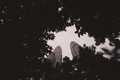 A000858-R1-33-4 (mr. Wood) Tags: kl kualalumpur malaysia film filmisnotdead ishootfilm leica leicam leicausa leicarussia m6 summilux rokkor minolta