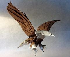 Bald Eagle (mrmicawer) Tags: papiroflexia origami papel águila eagle rapaz ave pájaro bird