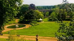 The eternal beauty of Avenham Park in the sunshine. (peterileypics) Tags: park preston trees grass wildlife bridge fountain sunshine sun nature lightroom light