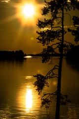 ilta-aurinko (VisitLakeland) Tags: akselipesä finland kallavesi kuopio kuopiotahko lakeland auringonlasku ilta järvi lake luonto maisema nature outdoor scenery sunset