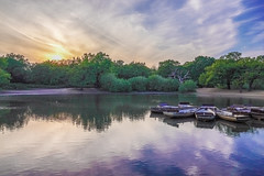 don't let the sun go down on me (Paul wrights reserved) Tags: reflection reflections reflectionphotography sky skyscape skyscapes skyline sun sunset sunsets colouredsky dramatic dramaticsky water lake boat boats cloud clods hazy calm still stillwater composition tree trees