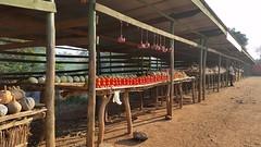Roadside market, Malawi (Shazy-mazy) Tags: malawi market