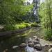 Sapokka Water Garden 513