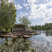 Sapokka Water Garden 501
