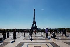 Eiffel Tower 135/365 2019