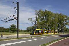 Vaker testrijden op de Uithoflijn (Tim Boric) Tags: utrecht uithof uithoflijn sciencepark tram tramway streetcar strassenbahn caf urbos uov