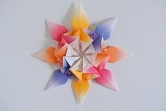 Aurelian Star (Byriah Loper) (Byriah Loper) Tags: origami paperfolding paper polygon polyhedron byriahloper