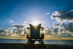 The Sun (Mikesch.75) Tags: blau beach blue house cloude clouds sun sonne bird rescue ocean sea tower sky bluesky photoart photographer miami miamibeach