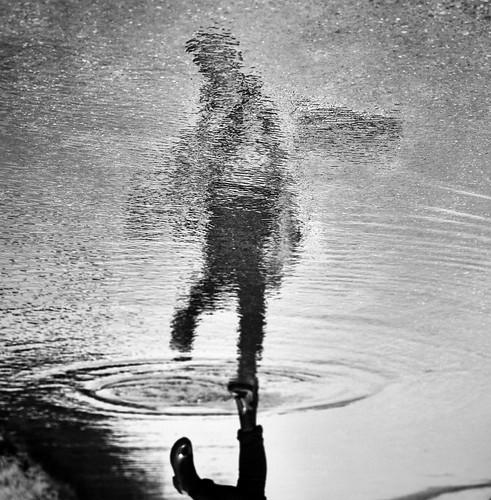 Mirrorland image