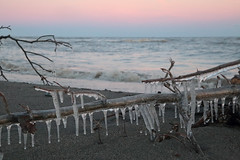 Frozen Flotsam (peterkelly) Tags: canon 6d digital northamerica ontario canada wheatley lakeerie water winter sandy sand icicle ice driftwood tree wood branch shoreline shore