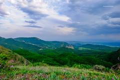 DSCF1854 (george_demetrashvili) Tags: kiketi georgia nature mountain green spring heaven trees beforerain