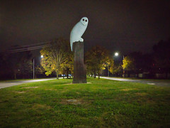 The Owl Statue on Thursday morning (garydlum) Tags: owlstatue publicart belconnen australiancapitalterritory australia