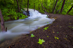Feel the Pull (KC Mike Day) Tags: trail waterfall flow leaves path parkville missouri nature sanctuary kc kcmo city kansas rain rainfall water