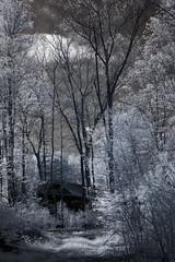 IMG_3526 (Dan Correia) Tags: belchertown infrared clouds shadows barn canonef50mmf18 15fav topv111 topv333 510fav