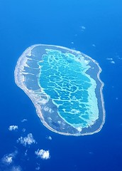 L'Atoll de Mataiva vu du ciel en Polynésie française (Christian Chene Tahiti) Tags: samsung téléphone s7e mobile mataiva atoll pacifique polynésie lagon tuamotu