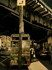 Health Heaven (Robert S. Photography) Tags: street scene cart subway cars flowers signs brooklyn brightonbeach newyork sunshine spring sony color dsch55 may 2019