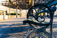 Relax and enjoy your stay (RomanK Photography) Tags: centralpark manhattan nyc newyorkcity bench city sonyalpha