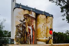 Wheat Silos at Wirrabara (Marian Pollock) Tags: wheatsilos australia wirrabara southaustralia silos art painting bird man farmer