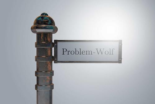 Problem-Wolf-auf-Wegweiser-Schild