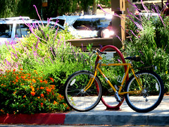 The Yellow Bicycle (Vicki LW) Tags: claremont yellow bicycle msh05193 msh0519 100xthe2019edition 100x2019 image42100