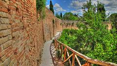 * Girando e osservando * (argia world 1) Tags: marche recanati colledellinfinito muro staccionata alberi siepe pini giacomoleopardi argiagranuzzo cielo nuvole