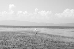 Alone (tramankulua) Tags: bird pajaro txori bakarrik alone soledad solo agua water ur lake ohrid lago laku sky cielo horizonte monocrome monocromo