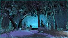 Bleuté hivernal (Tim Deschanel) Tags: tim deschanel sl second life exploration landscape paysage serendipity hoch hiver winter arbre tree foret forest bleu blue