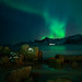 Wild Skies - Northern Lights - Lofoten