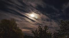 2019-05-17 (alex.jorneblom) Tags: epic sky moon stars clouds trees night trails monster pattern minions beautiful