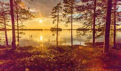 sunset by a lake in Finland 2 (VisitLakeland) Tags: finland kallavesi kuopio kuopiotahko lakeland auringonlasku ilta järvi lake luonto maisema nature outdoor scenery sunset