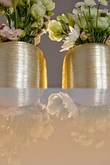 Elegant Flowers (48) (Polis Poliviou) Tags: naturepics naturephotography environment relax relaxing calming cyprus life living enjoyable colour colourful mediterranean travel beautyinnature rural countryside agricultural winter flowers plant floral flora winterblossom botany bulbs green white wallpaper herbs cyprustheallyearroundisland cyprusinyourheart flowerarrangement zypern republicofcyprus κύπροσ кипър chypre ©polispoliviou2019 polispoliviou polis poliviou πολυσ πολυβιου flowerbulb flowerbulbs ranunculus petals garden gardening gardeners vase colors spring yellow arrangement elegant